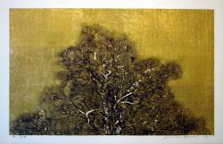 Thumbnail of Limited Edition Woodblock Print on Gold Leaf by Hoshi, Joichi